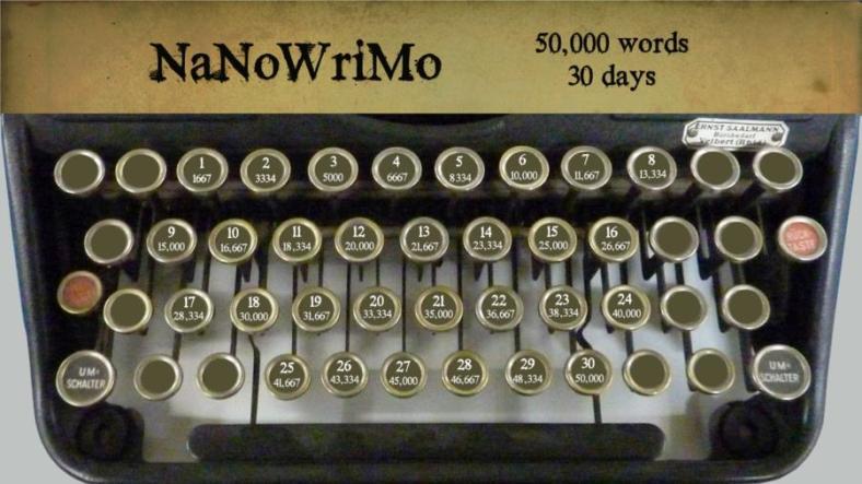 NaNoWriMo 50k words per day